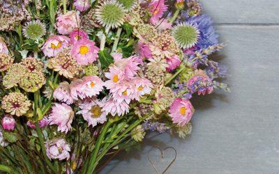 Blumen Fischer